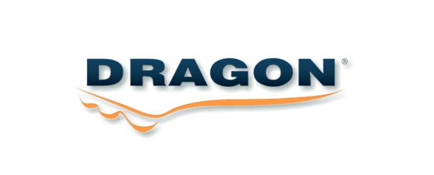 DRAGON MARKIZY LOGO