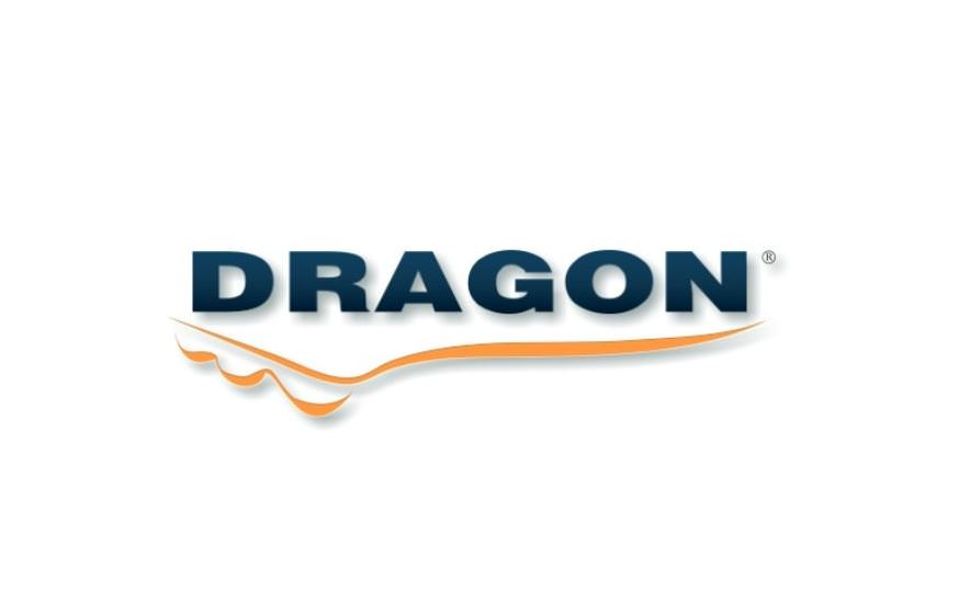 DRAGON MARKIZY LOGO
